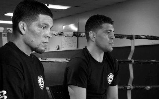 Image for Nick and Nate – A Tale of Two Diaz's