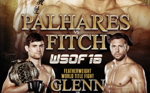 Image for WSOF 16 Quick Results and News