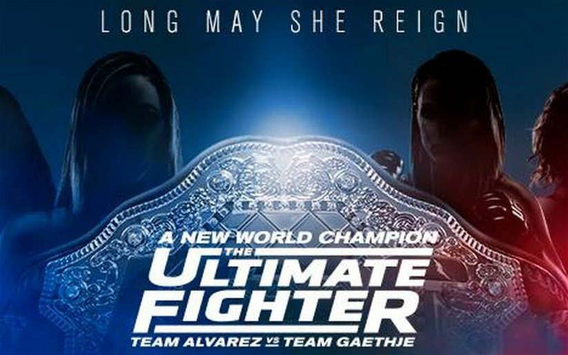 Image for The Walkout Consultant: TUF 26 Finale