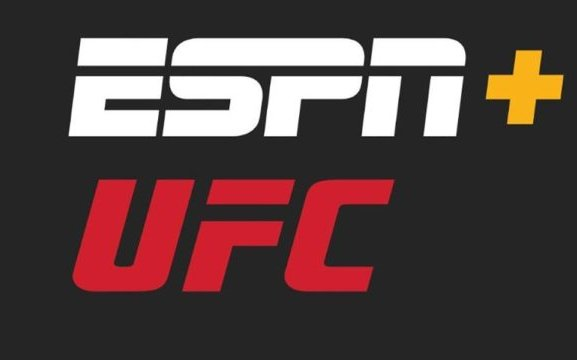 Image for Where to Watch the Best MMA Fights in 2021