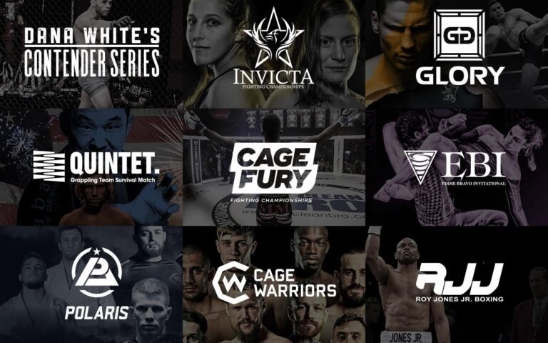 Image for CES MMA Partners with UFC Fight Pass