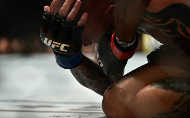 Image for UFC 235: What We Learnt
