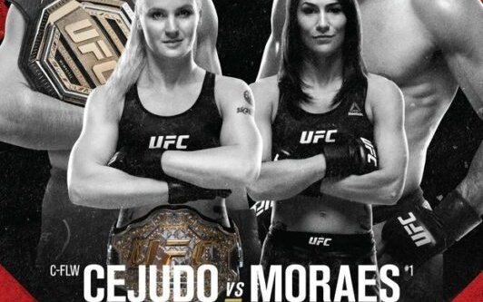 Image for Walkout Songs UFC 238