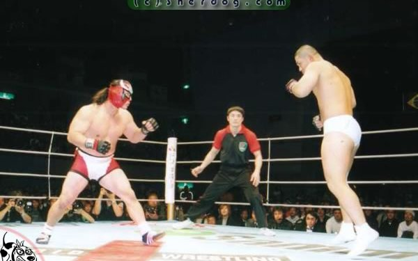 Image for Pro Wrestlers In MMA #4