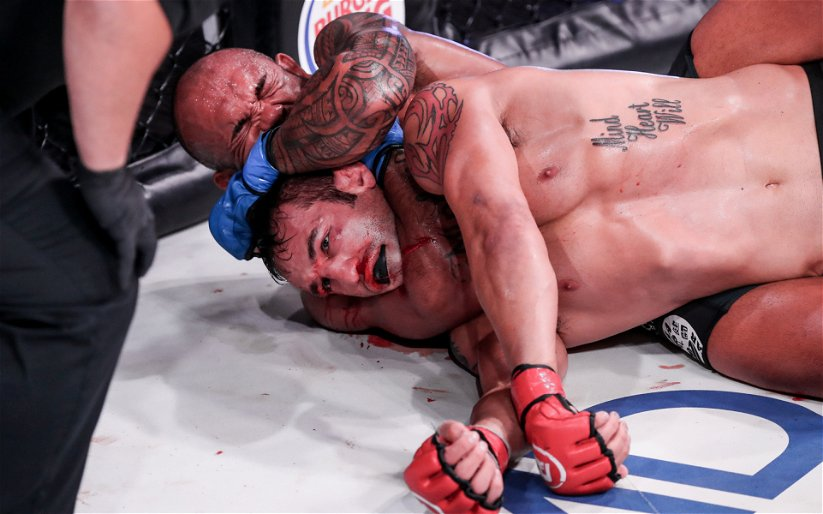 Image for Red Hot: Bellator's Rising Rookies